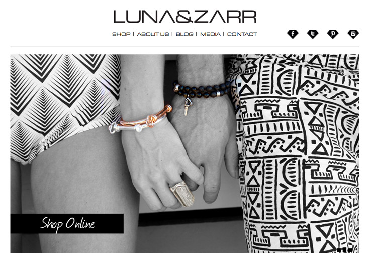 Image from Luna & Zarr Website Development