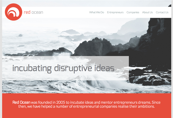 Red Ocean Web Development